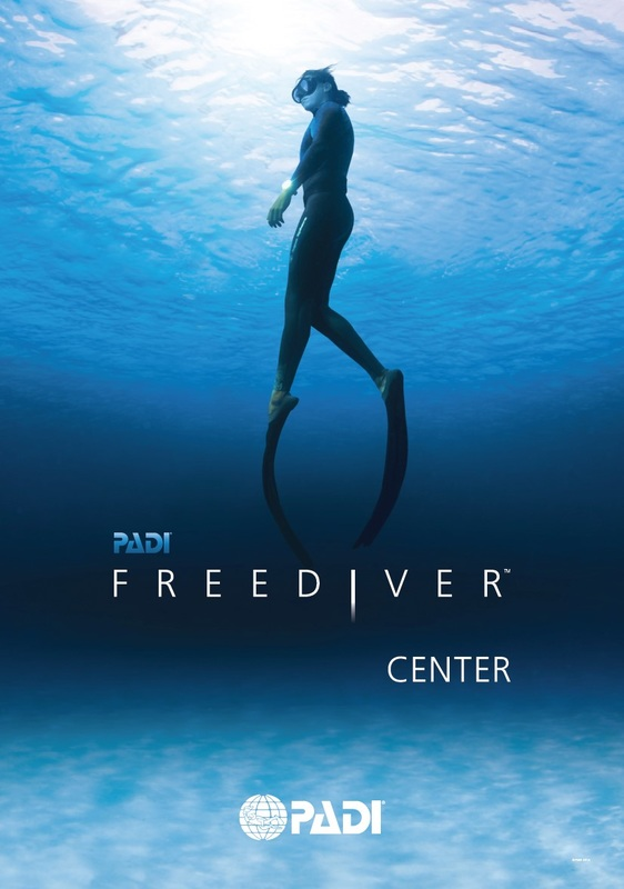 freediver center logo