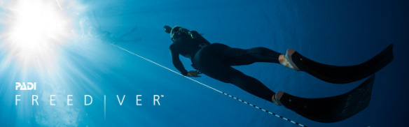 freediver header