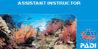 corso assistant instructor